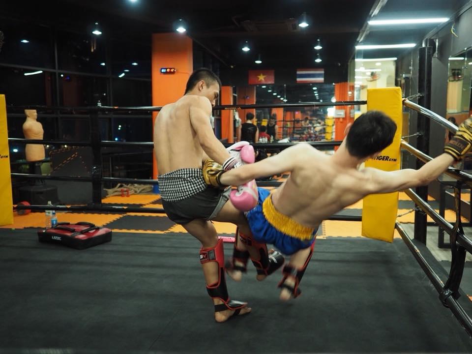 Học Muay Thái TPHCM tại Tiger Muay Club