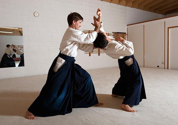 Nên học môn võ nào? Aikido