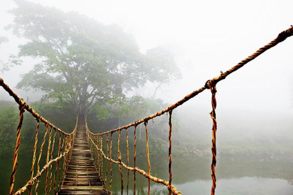 Cầu Mây Tả Van