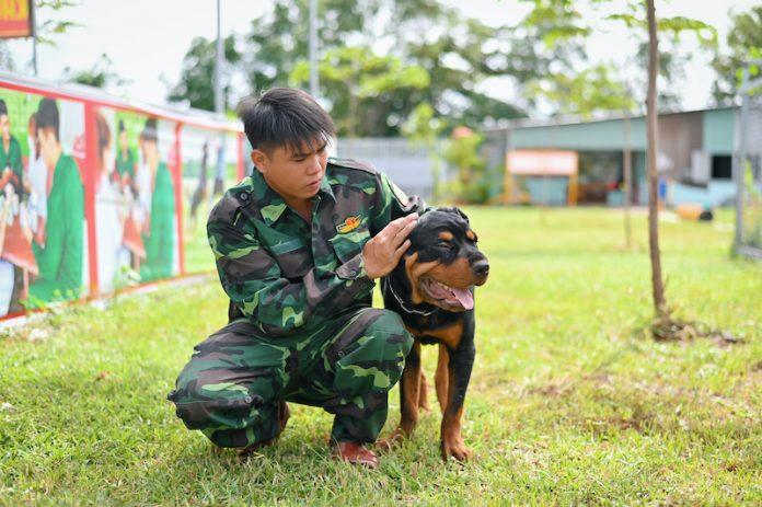 trường trung tâm huấn luyện chó tphcm