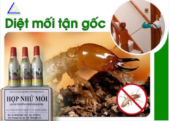 Bảo An - Công ty diệt muỗi tại TPHCM