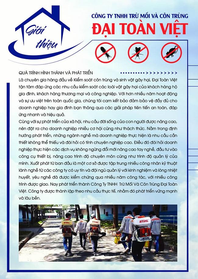 Đại Toàn Việt - Công ty diệt muỗi uy tín tại TPHCM
