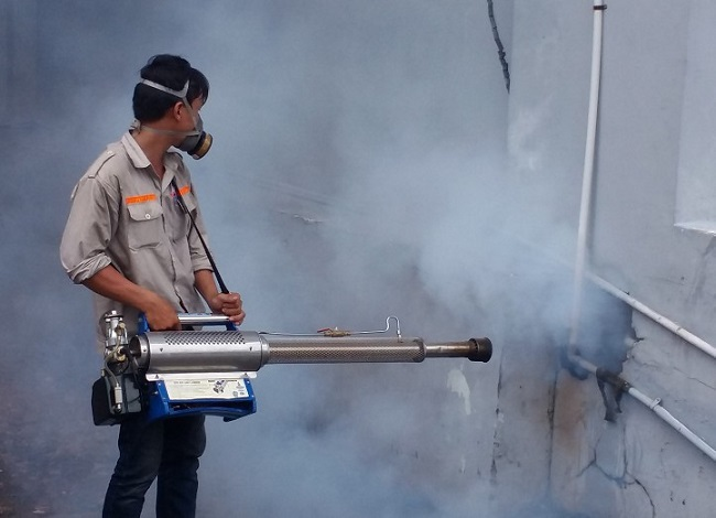 Công ty diệt muỗi TPHCM - Đất Việt Xanh