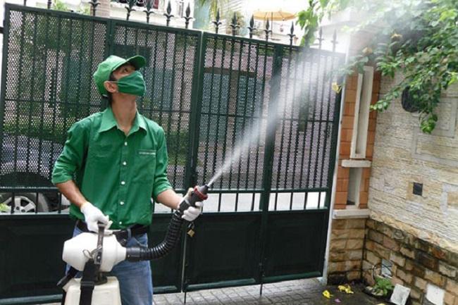 Hòa Tâm - Công ty diệt muỗi tại TPHCM