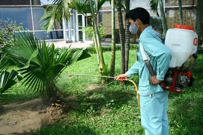 Công ty diệt muỗi tại TPHCM Huy Hoàng