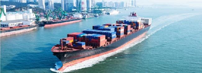 Long Phan - công ty vận tải biển Việt Nam