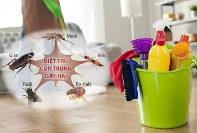 Công ty diệt côn trùng Đà Nẵng uy tín nhất