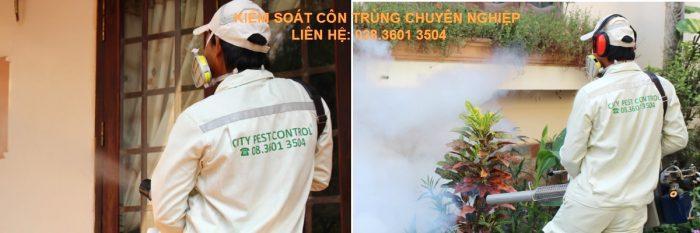 Công ty diệt muỗi tphcm City Pest Control