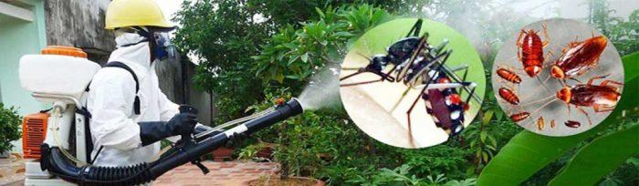 Công ty diệt muỗi tphcm Nam An