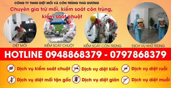 Công ty diệt muỗi tphcm Thái Dương