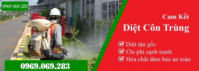 Công ty diệt muỗi tphcm Thành Tâm
