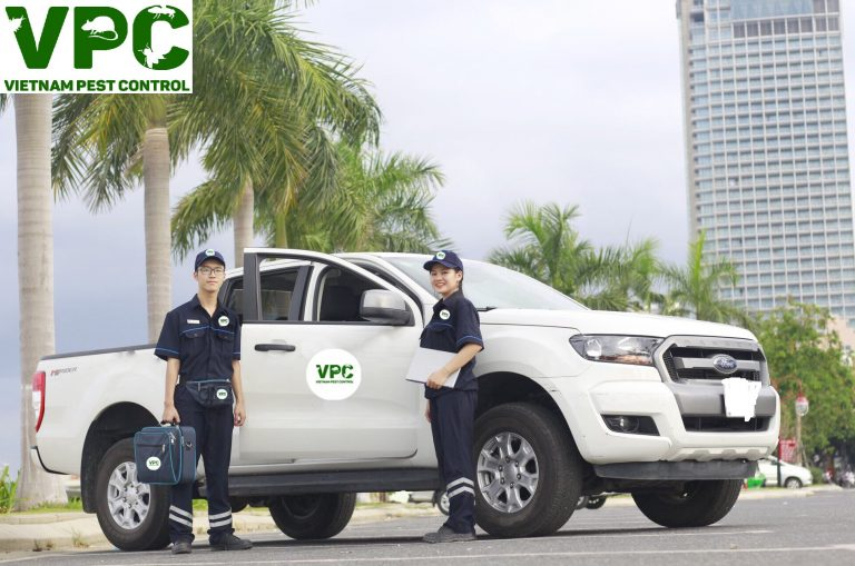 Công ty diệt muỗi tphcm Kiểm Soát Côn Trùng Việt Nam VPC