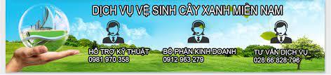 Công Ty vệ sinh công nghiệp tphcm Cây Xanh Miền Nam