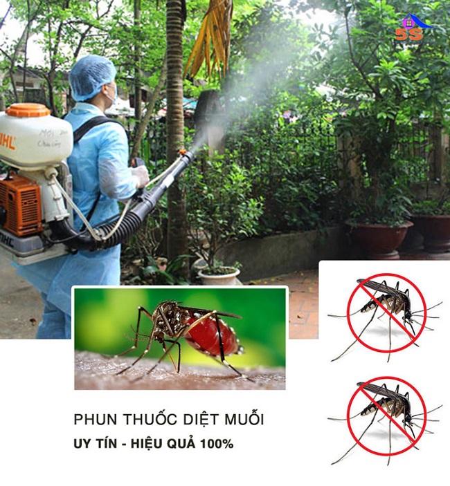 Diệt côn trùng 5S - Công ty diệt côn trùng tại Đà Nẵng