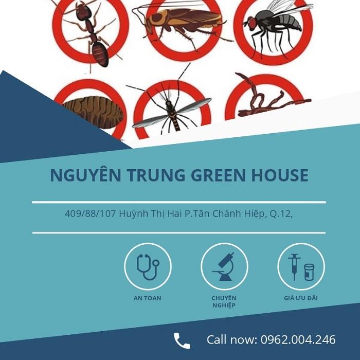 Dịch vụ diệt gián tại nhà tphcm Nguyên Trung Green House
